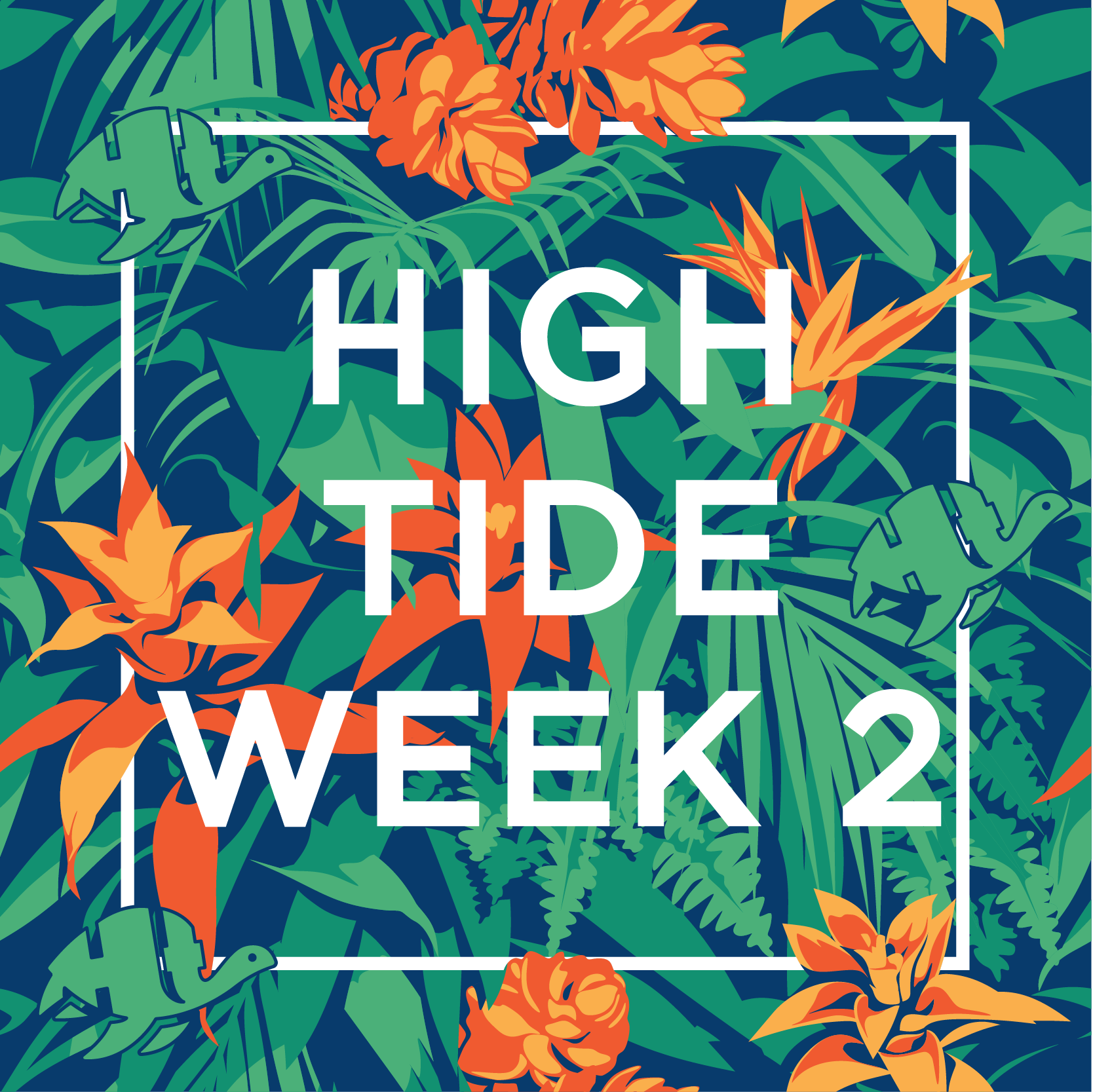 Overview - High Tide week 2: March 12-14, 2019 - High Tide Ultimate