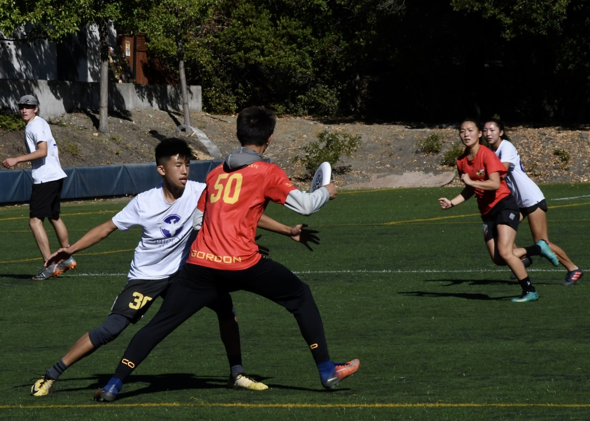 Overview 2019 Summer Camps Los Gatos Bay Area Disc Association
